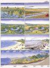 A veszélyeztetett természet 3-4. DUO