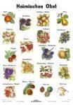 Heimisches Obst