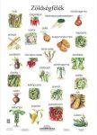 Zöldségfélék