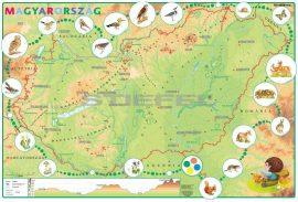Gyerek Magyarország domborzata
