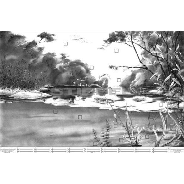 A folyóvíz életközössége DUO