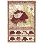 Magyarország ezeréves sorsa térkép poszter