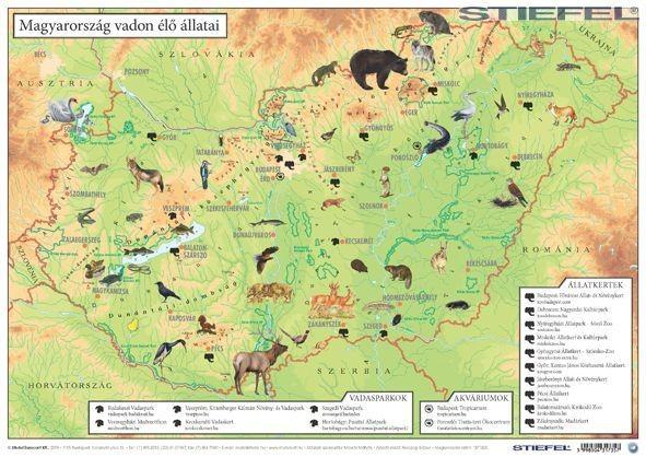 élő térkép magyarország Magyarország vadon élő állatai / Magyarország állatvilága asztali  élő térkép magyarország