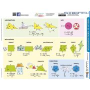 Kerület- és területszámítások + Négyszögek csoportosítása tanulói munkalap