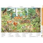 Az erdő életközössége + munkaoldal tanulói munkalap