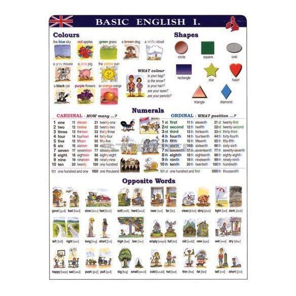 Basic English I. DUO