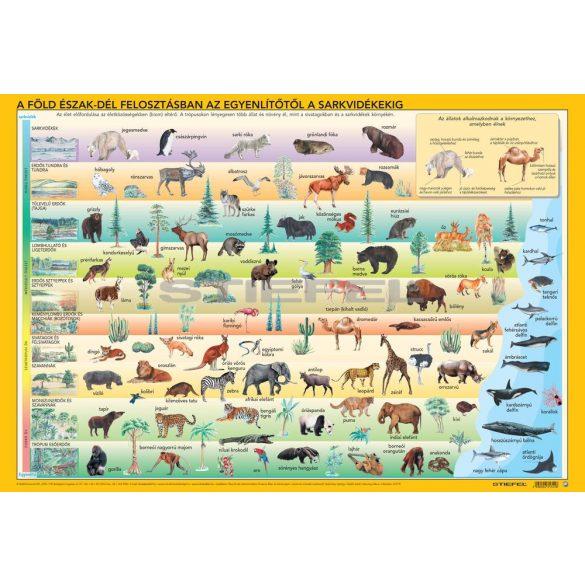 Világ állatai/állatok élőhelye íróasztali könyöklő