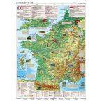 Élémantaire Faits de France DUO- Tények Franciaországról (oktatótabló)