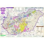 Magyarország borvidékei fémléces térkép