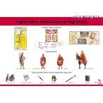 Légiós tábort és római katonát, fegyverzetet szemléltető tábla.