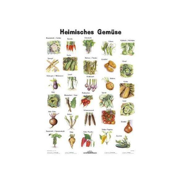 Heimische Gemüse