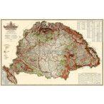 Magyarország erdészeti térképe fóliázott, lécezett