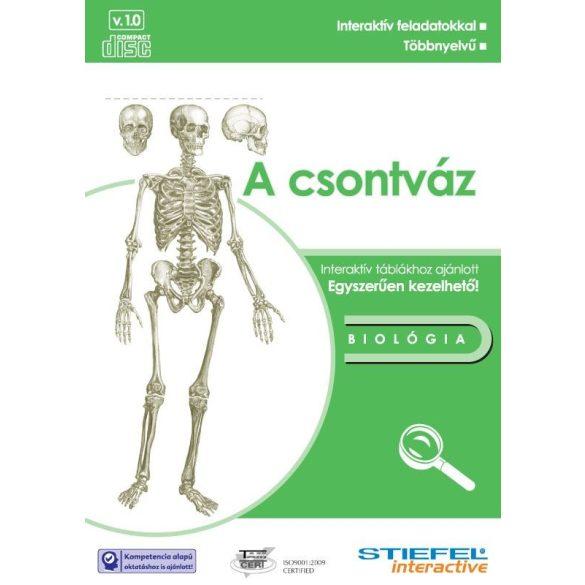 Csontváz-oktató CD